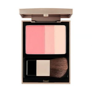 THE FACE SHOP Signature Blusher 6g