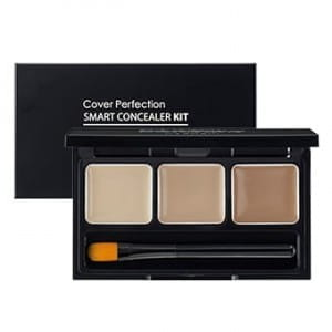 THE SAEM Cover Perfection Smart Concealer Kit 4.2g