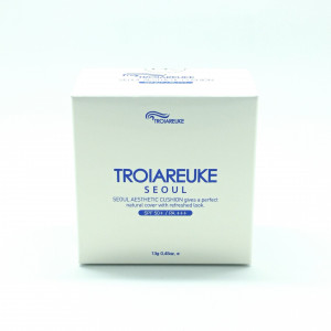 TROIAREUKE Seoul Aesthetic Cushion #23 shade(Natural beige)