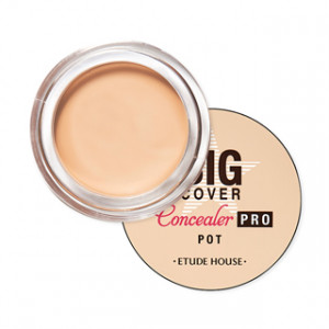 ETUDE HOUSE Big Cover Pot Concealer Pro 4g